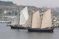 Portuguese traditional sailing adventures for groups, Troia - Go Discover Portugal travel