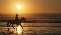 Riding a horse on the beach at sunrise starts my Perfect Saturday.  I have my boots and can't wait to explore the world. :)  #PBperfectsaturday with @CaitlinFlemming and @PoppyBarley
