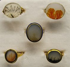 Moss agate rings, tiny landscapes.