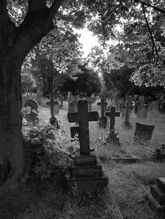 Hither Green Cemetery is a large cemetery located on Verdant Lane, in Whitefoot, London, England. The cemetery is situated between Catford, Hither Green, Grove Park and Lee.