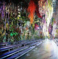 Christian Dior: Paris Runway (Spring-Summer 2014). #contemporary #art #contemporaryart #visualarts #contemporary_art #visual_arts