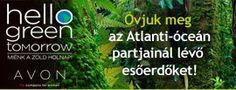 Hello Green Tomorrow - az esőerdők megmentéséért