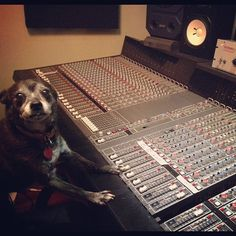 Something is telling me not to trust this audio engineer for the studio. Hmmm