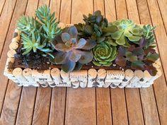 Ingenious Wine Cork Planters For Your Little Plants