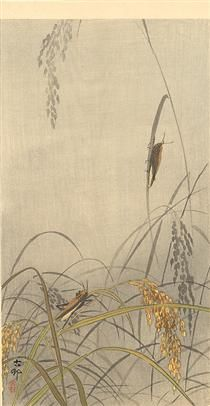 Grasshoppers on Rice Plants - Ohara Koson