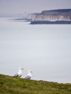 Seaford, East Sussex, England