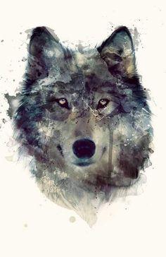 Image result for elaine proffitt wolves