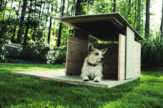 Puphaus Modern Doghouse I Hiconsumption