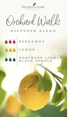 Young Living diffuser blend - - Get your nature fix with garden-inspired diffuser blends—no green thumb required! Young Essential Oils, Essential Oils Guide, Essential Oil Uses, Bergamot Essential Oil, Young Living Diffuser, Young Living Oils, Design Facebook, Essential Oil Diffuser Blends, Doterra Diffuser