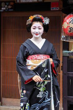 Geisha Japan, Japanese Geisha, Kyoto Japan, Japanese Beauty, Japanese Kimono, Asian Beauty, Osaka, Kabuki Costume, Yukata