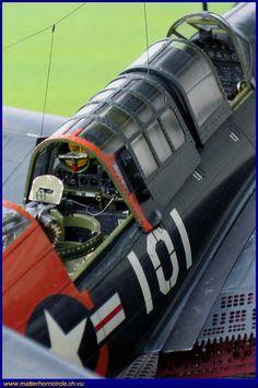 Helldiver-02.jpg (679×1024)