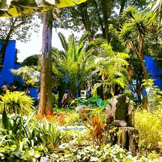Casa azul Frida kalo..love the lushness of the grounds..
