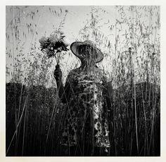 hierbas Photo by Mariya Petrova - Existencia — National Geographic Your Shot