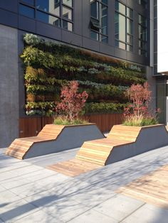 Amazon HQ Seattle Sidewalk to bench to planter