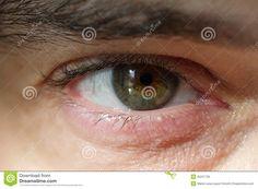 macro-image-human-eye-male-35237729.jpg (1300×957)