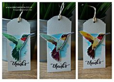 Independent UK Stampin' Up! Demonstrator Bibi Cameron: MULTI STEP STAMPING + PICTURE PERFECT BY STAMPIN UP ( STAMPING THE HUMMINGBIRD )