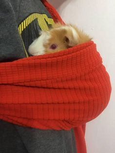 Adjustable carrier for small pet. Guinea pigs seem to love this :) Fun gift for a child or adult Guinea Pig lovers! All carriers will be made to order. *slight variations in every sling. Ask about custom colors/patterns! Patent Pending