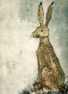 'Hare' By Kerry Buck. Blank Art Cards By Green Pebble.