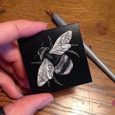 (Cute bee in scratchboard. Bee Drawing, Black Paper Drawing, Scratchboard Art, Scratch Art, Tinta China, Insect Art, Ap Art, Linocut Prints, White Art