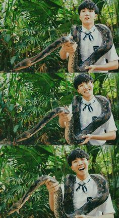 Jhope ♡ lol I hate snakeu Namjoon, Seokjin, Taehyung, Gwangju, Jimin, Bts Bangtan Boy, Yoongi Bts, Jung Hoseok, Foto Bts