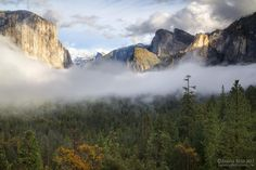 The Unveiling - photograph by Aaron Reed on 500px - Yosemite