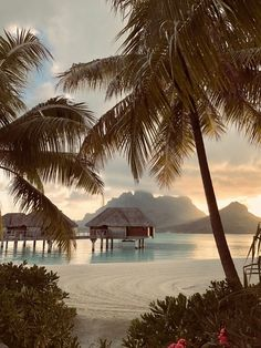 "INTERIOR PORN on Twitter: ""Welcome to Bora Bora 🏝… """