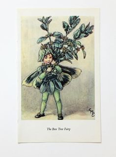 Box Tree Fairy Flower Fairies Picture by PeonyandThistlePaper