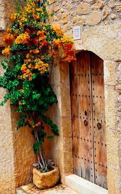 Orange bougainvillea at the door in Capdepera, Mallorca • photo: Markus Hermenau on Flickr