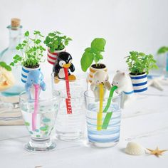 Find More Flower Pots & Planters Information about Chuppon Self Watering Plant Holder Animal Planters self watering from animal straw With The Soil And Seeds,High Quality holder car,China holder jewelry Suppliers, Cheap holder headphones from Annie's Fashion  store on Aliexpress.com
