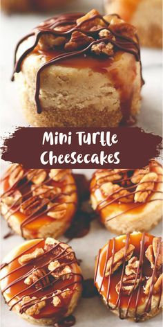 Mini Turtle Cheesecakes feature a thick graham cracker crust, vanilla cheesecake filling, and are topped with caramel, toasted pecans, and chocolate! Ultimate Turtle Cheesecake Recipe, Turtle Cheesecake Recipes, Cheesecake Desserts, Mini Desserts, Christmas Desserts, Christmas Baking, Just Desserts, Dessert Recipes, Raspberry Cheesecake