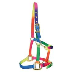 Bambino Rainbow Halter [SW-BAM2000X] - $23.00 : Equestrienne!, Quality... ❤ liked on Polyvore