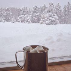 BeyazBegonvil I Kendin Yap I Alışveriş IHobi I Dekorasyon I Kozmetik I Moda blogu: En Güzel Kar Fotoğrafları