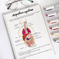Image about inspiration in 𝐒𝐭𝐮𝐝𝐲 Nursing School Notes, College Notes, Medical School, Middle School Hacks, School Study Tips, Medicine Notes, Medicine Student, Science Notes, Pretty Notes