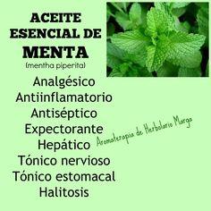 Puedes comprar este aceite esencial aquí: http://www.herbolariomargatienda.com/herbolariomarga/2128936/aceite-esencial-de-menta.html