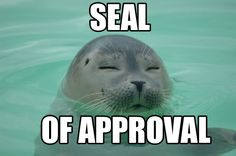 Funny pictures about The real seal of approval. Oh, and cool pics about The real seal of approval. Also, The real seal of approval. Funny Cats, Funny Animals, Cute Animals, Visual Puns, Animal Puns, Animal Humor, Animal Mashups, Polar Bear, Funny Pictures