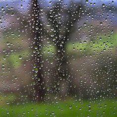 #ardennes #pluie