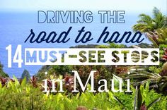Maui is full of waterfalls, banana bread, and black sand beaches. Make sure to check out these stops on the road to Hana to get your fix in!
