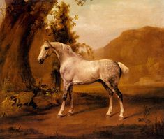 A Grey Stallion In a Landscape by George Stubbs ~ theequinest.com ~  clicking on this site will show you the horses of Artist, George Stubbs