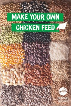 Making your own chicken feed is a great way to guarantee your chickens are getting all the essential nutrients they need! Your chooks will appreciate the egg-stra effort. Check out our article for some great information on making your own chook feed here, https://www.backyardchickencoops.com.au/making-your-own-chicken-feed-the-fundamentals  #loveyourchickens #chickenfeed #diychickenfeed