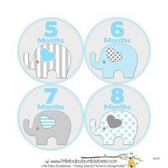 Baby Announcement Monthly Baby Stickers Monthly Baby Photos