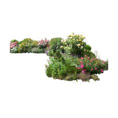 flowered_garden_png_02_by_montvalentstock-d4gygi0.png ❤ liked on Polyvore featuring flowers, garden, plants, tubes and grass