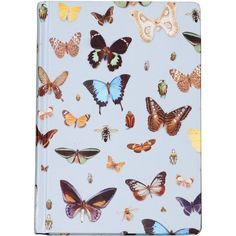 Ella Doran Bugs & Butterflies Journal - 15x21.5cm (£10) ❤ liked on Polyvore featuring home, home decor, stationery, fillers, books, notebooks, decor, accessories and blue