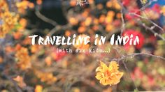 Intrepid Family Adventure - India  Want to take your family to a place they will be immersed in a culture totally different to your own but worried about how to plan a safe trip thats fun and interesting for you and the kids? Intrepid takes all the guess work out of your family adventures with their range of family holidays. Check out this awesome short video for some visual inspiration!