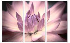 Drieluik canvas wanddecoratie Bloem in Bloei in kleur paars/roze