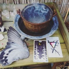 the wild unknown tarot image via @magicandcrystals  cauldron, sage, dove wing, the moon, three of wands