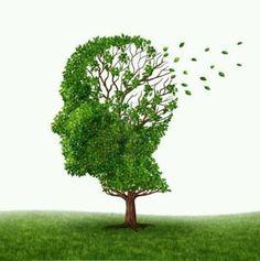 Neurology Dementia ☹ ✿ Es Meddy Bear