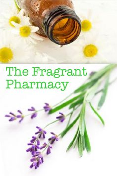5 Essential Oils for Your Natural Medicine Cabinet