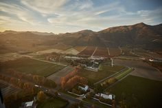 Each season has its own beauty, but Autumn does bring something special to the Franschhoek Valley. Landscapes, Autumn, Seasons, Wine, Beauty, Moth, Paisajes, Scenery, Fall Season