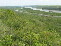 2009 - Looking towards Pine Island in the N. Saskatchewan River from south side of river overlook.