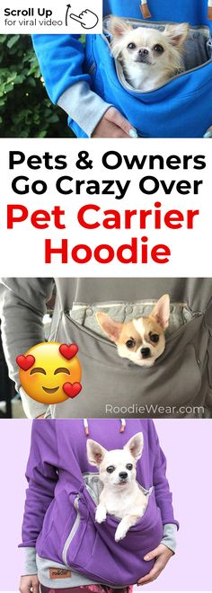 Roodie - Pet Carrier Hoodies - OMG! SO CUTE! I'll take my pets everywhere! www.roodiewear.com Chihuahuas, Dachshunds, Doggies, Teacup Puppies, Kangaroo Pouch, Puppy Party, Pet Carriers, Pet Stuff, Maltese